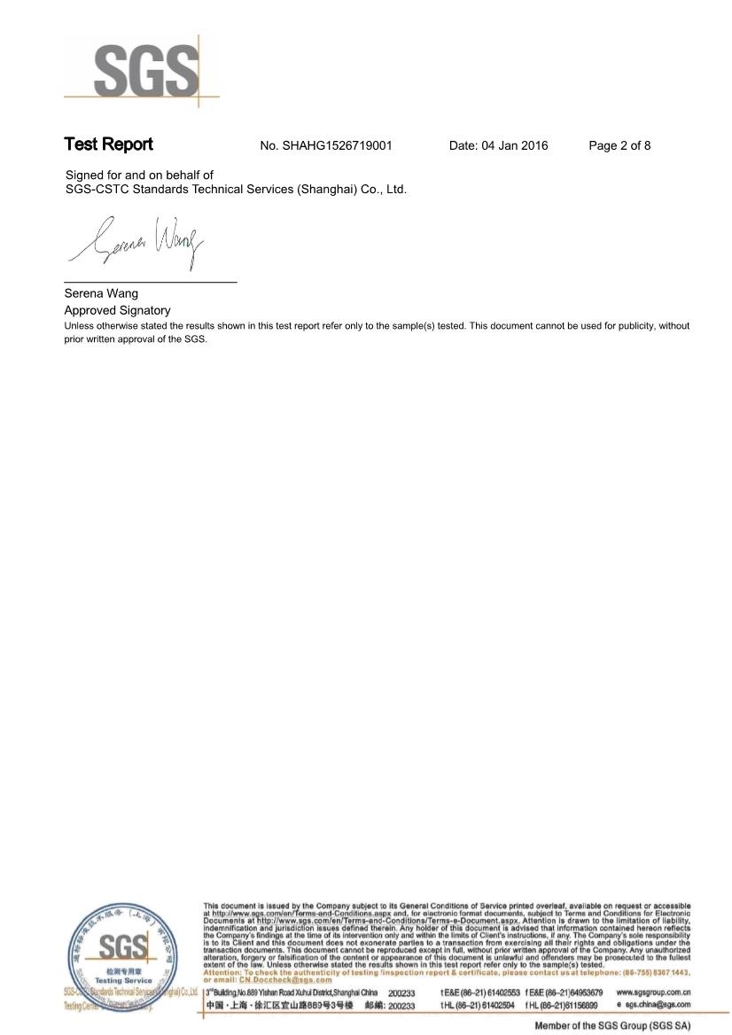 06261616073SGS.PDF_2