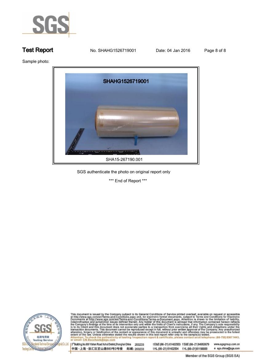 06261616073SGS.PDF_8